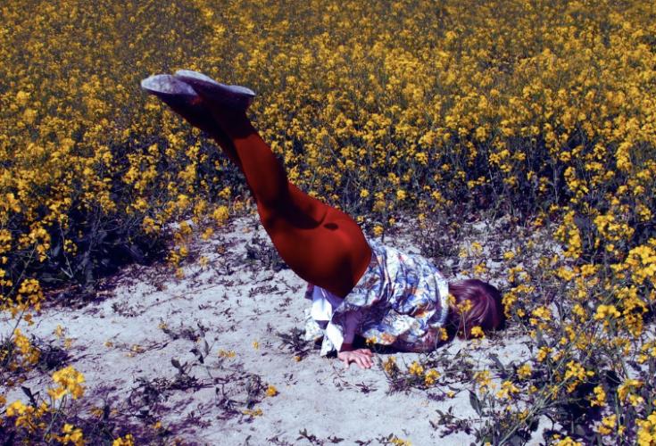 "Isabelle Wenzel ""Field 1"" (2015)"